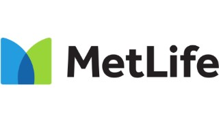 Metlife auto insurance in Horn Hill, AL